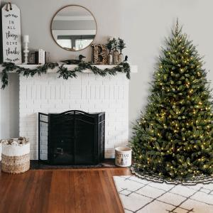 National Tree Company 7.5 ft. Natural Fraser Fir Tree with Clear Lights