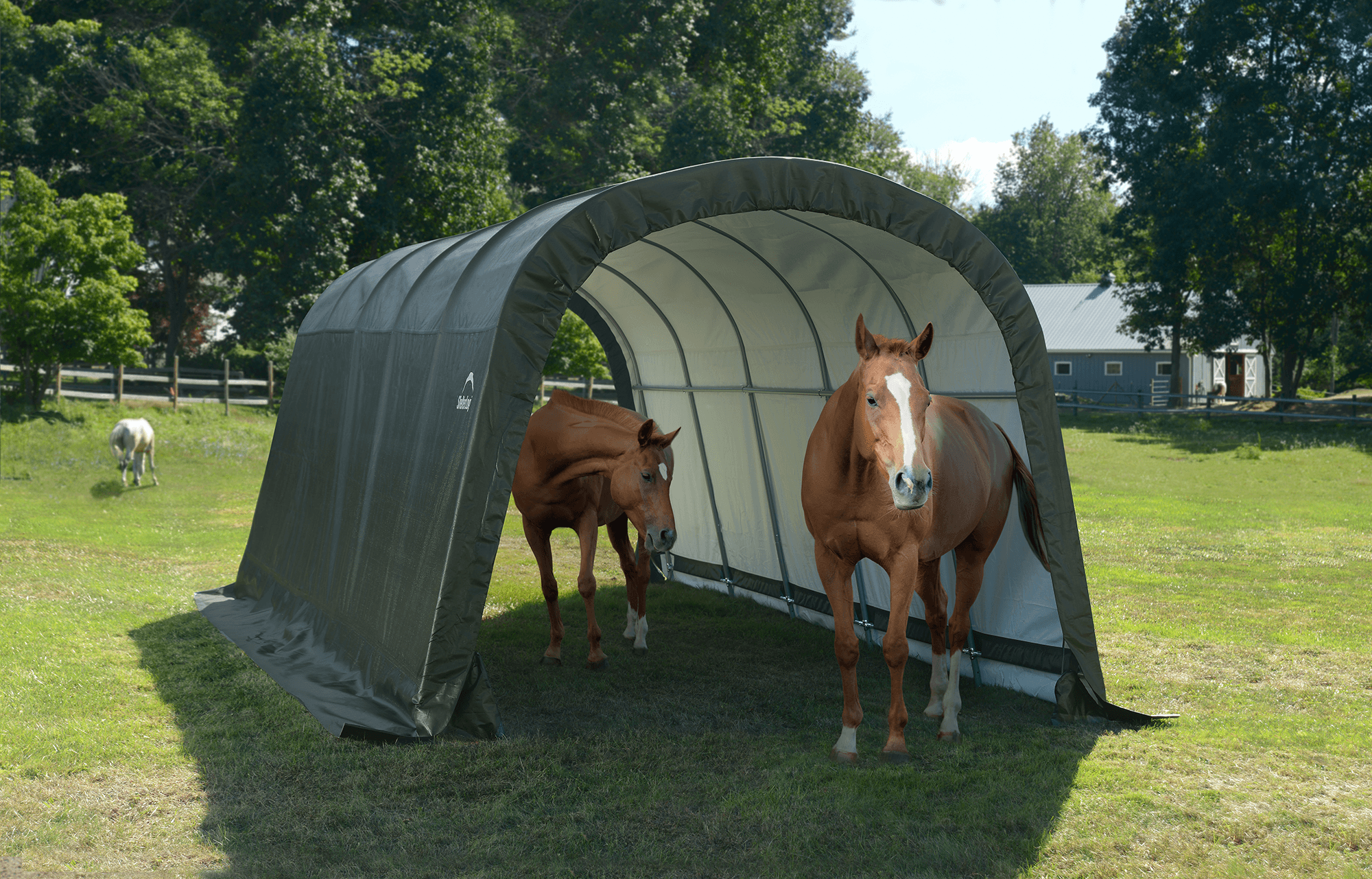 Run-In Shed-in-a-Box 12 x 20 x 8 ft.
