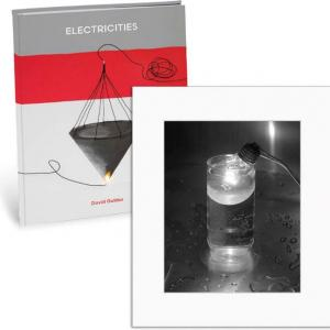 David Goldes: Electricities: Limited Edition (Hardcover)