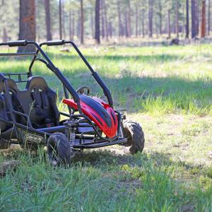Coleman Powersports 196cc Gas Powered Ride-On Go Kart