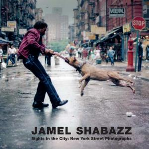 Jamel Shabazz: Sights in the City, New York Street Photographs : Limited Edition (Hardcover)
