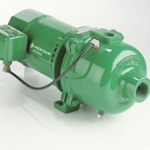 Pentair Myers 1 hp 27.5 gpm Cast Iron Shallow Well Jet Pump