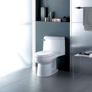 American Standard Champion 4 Tall Height 1-Piece 1.6 GPF Single Flush Elongated Toilet in White, Seat Included